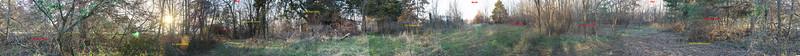 OP 05 Southeast of Barn winter 2014-15