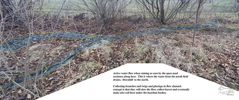 North edge of north field drainage