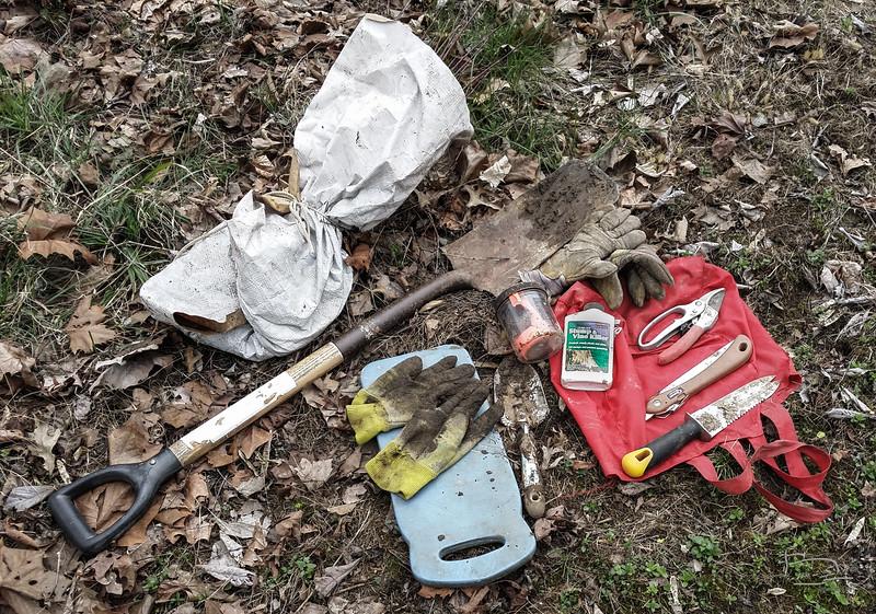 Tool kit for planting