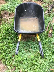 Wheel Barrow rain gauge overlfowed