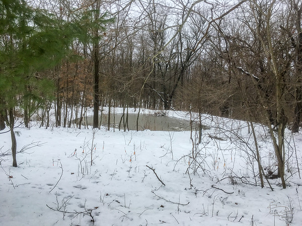 This is several days after the snowfall, a good 6 inches less snow that right after.