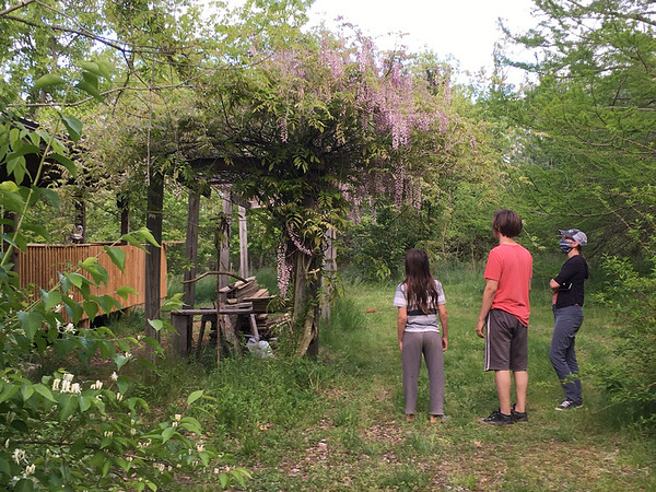 Landscape crew checking out wisteria