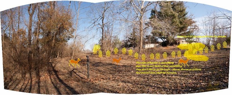 Deer barrier concept