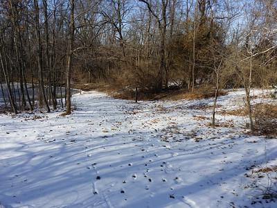 Winter sunny area  north of upper pond