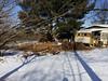 Snow melt in kitchen garden