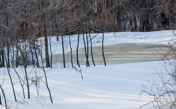 The Upper Pond at Mt. Pleasant after a 5 inch or so snowfall.  I suspect the drawing on the pond was made by wood ducks swimming in it when it was between slush and frozen.
