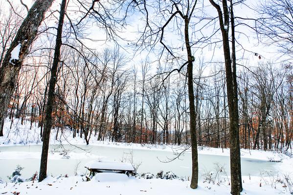 Lower pond, 2006