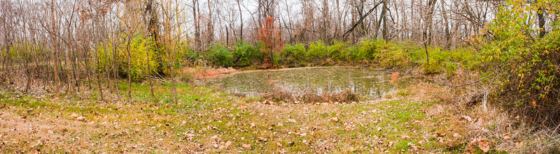 Upper pond, Nov 2009