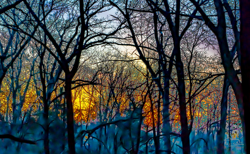 Tonal Abstraction of sunset in Central Forest