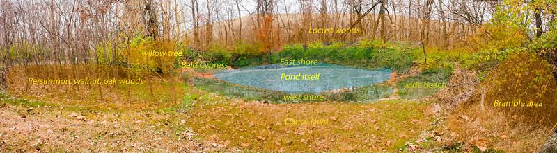 Upper pond, Nov 2009