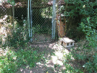before and after of the gate into the aviary.  Had to dig out nearly 2 inches of very nice top soil chock full of wintercreeper roots.  Might be used this weekend to house some sheep temporarily.