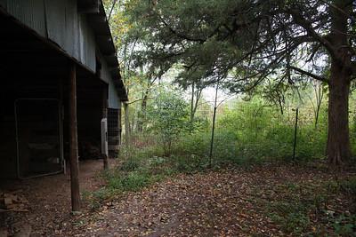 fenced enclosure