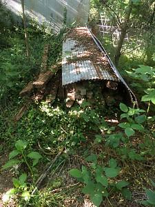 Oak 2x4 stored outside