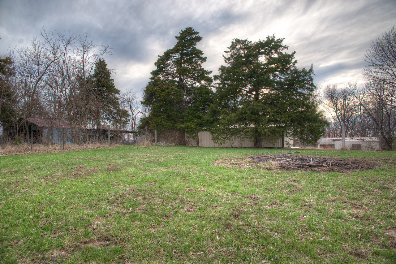 Big field and cedar classroom