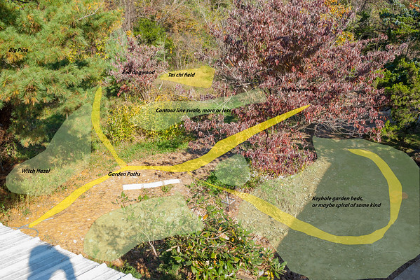 Front yard from south above, western part