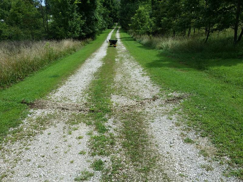 Driveway surface 1