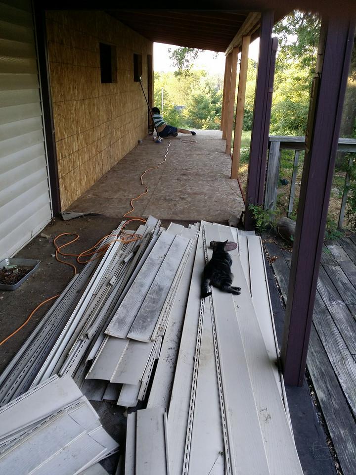 Star sanding the deck surface.