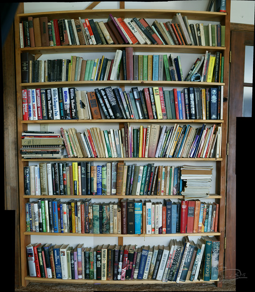 One of several bookshelves built.