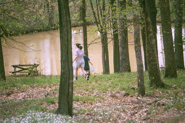 Lower pond, 2001