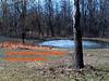 upper pond, 2004