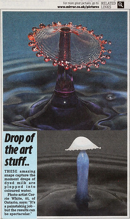 Article in Daily Mirror (UK) Nov. 6, 2009