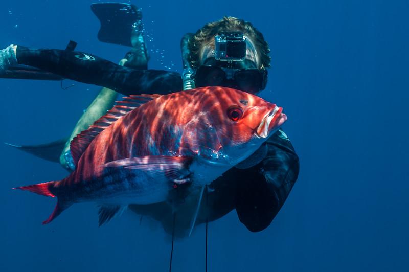 Deepwater Prize