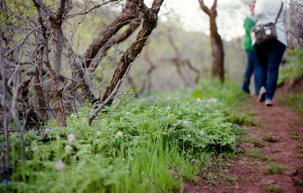 Red Butte Summer Hike w/Meghan & Julia