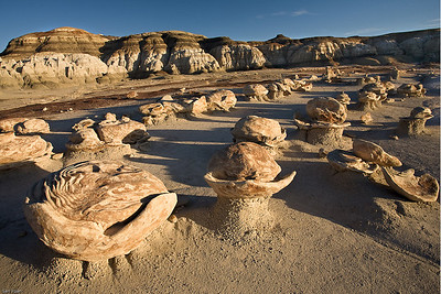 Cracked Eggs_Bisti Badland