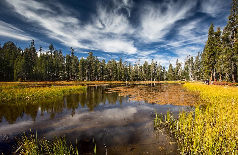 Fall at Siesta Lake (1 of 1)