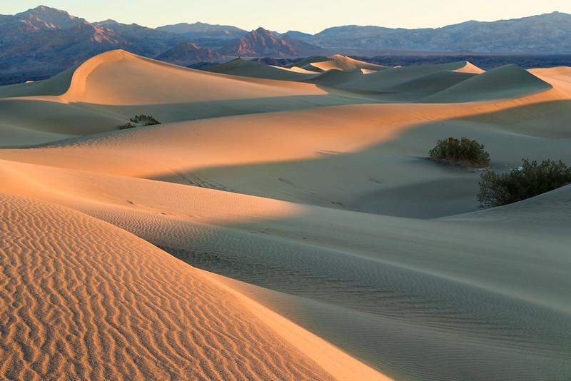 First Light_Mesquite Sand Dune