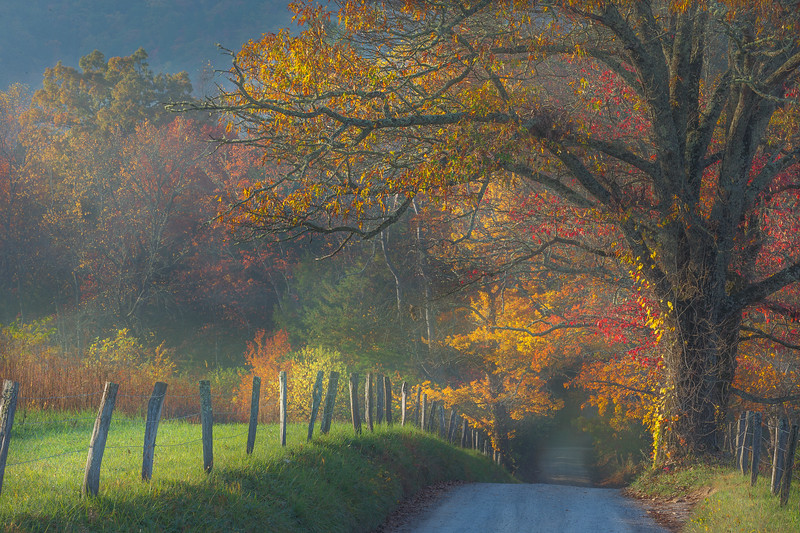 Sparks Lane_Cades Cove_TN-6