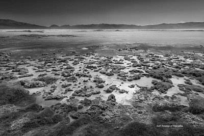 Salt Swamp of Atacama