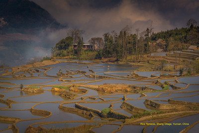 Rice Terrace at Sheng Village