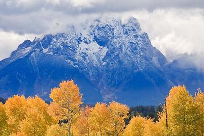 Aspen and Mt Moran