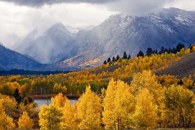 Aspen and Mt Moran_2_color