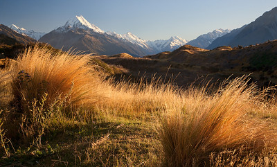 Morning Light, Mt Cook, New Zealand
