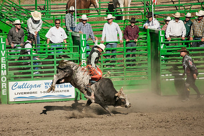 Livermore Rodeo, CA