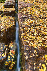 Fall in Zion NP