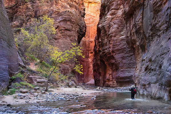 At the Narrows, Zion NP