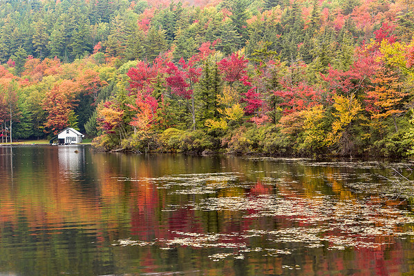 Fall colors, Adirondack, NY