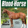 November 26, 2011 Issue 47 Cover of The Blood-Horse with Kitten's Joy.