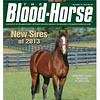 December 8, 2012 Issue 50 Cover of The Blood-Horse featuring new sire Union Rags at Lane's End<br /> © The Blood-Horse