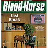 September 15, 2012 Issue 38 Cover of The Blood-Horse featuring Distorted Humor colt at the Keeneland September Select Session<br /> <br /> © The Blood-Horse