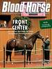 September 21, 2013 Issue 37 Cover of Blood-Horse <br /> Front & Center<br /> $2.5 million War Front colt leads strong Book One at Keeneland