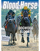 June 15, 2013 Issue 23 Cover of Blood-Horse featuring Palace Malice winning the Belmont Stakes.<br /> © Blood-Horse