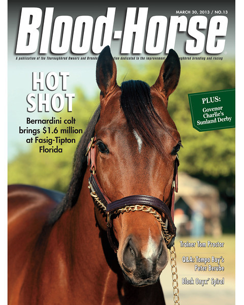 March 30, 2013 Issue 13 Cover of Blood-Horse featuring Bernardini colt that brought $1.6 million at Fasig-Tipton Florida<br /> © Blood-Horse
