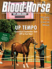September 14, 2013 Issue 36 Cover of Blood-Horse <br /> Up Tempo<br /> Keeneland September Sale Off to Fast Start