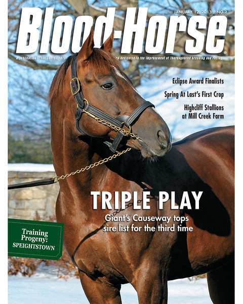 January 12, 2013 Issue 2 Cover of Blood-Horse featuring sire list leader Giant's Causeway<br /> © Blood-Horse