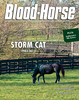 May 4, 2013 Issue 18 Cover of Blood-Horse featuring Storm Cat<br /> © Blood-Horse