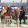 "March 22, 2014 Issue 12 Cover of The Blood-Horse<br /> Hop's Spot: Hoppertunity edges Tapiture in the Rebel at Oaklawn.<br /> Also in this issue:<br /> On the Front Lines: Joe Allen has another big hitter in War Front<br /> New Windows: More racetacks offer advance deposit wagering options<br /> Marching Forward: A pair of $1.6 million colts helps OBS juvenile auction set records<br /> Buy this issue: <a href=""http://shop.bloodhorse.com/collections/current-issue/products/the-blood-horse-mar-22-2014-print"">http://shop.bloodhorse.com/collections/current-issue/products/the-blood-horse-mar-22-2014-print</a>"